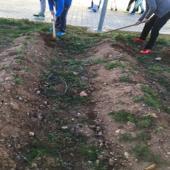 Los alumnos han quitado las hierbas y han removido la tierra para oxigenar nuestra parcela de guisantes.